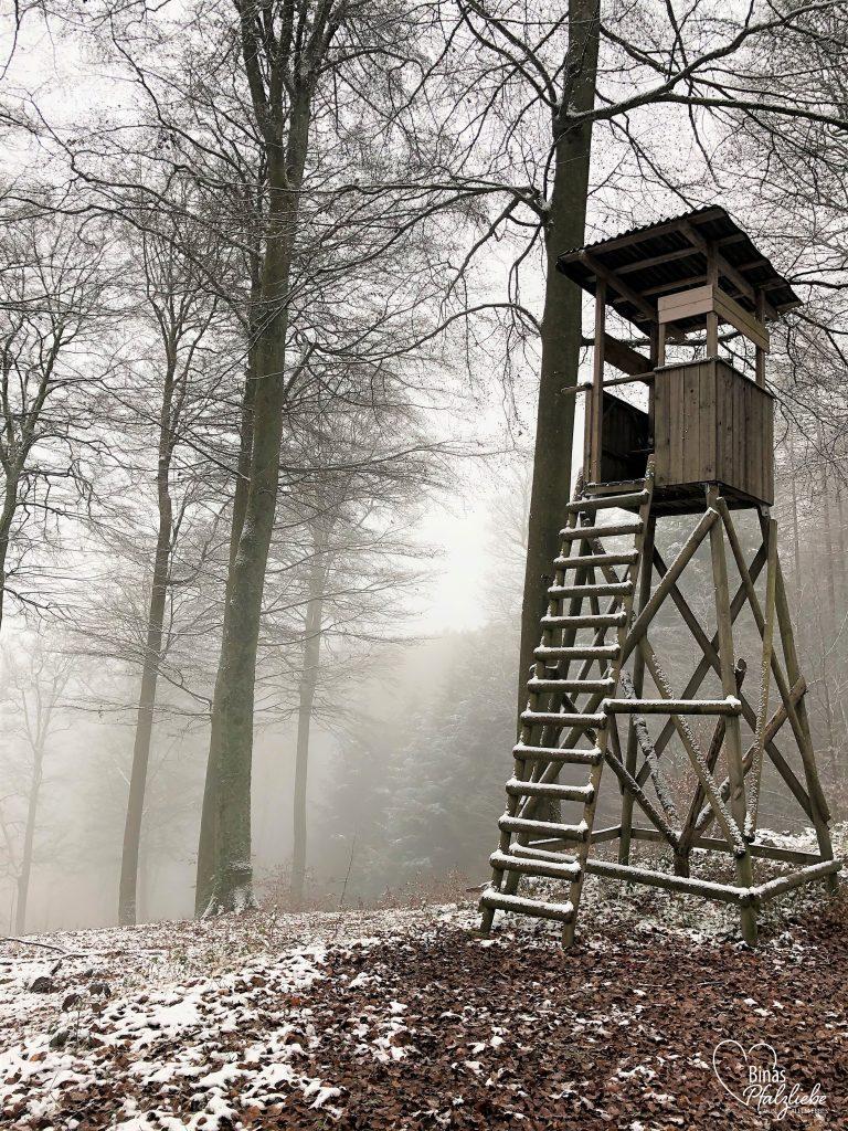 Hochsitz im Pfälzerwald #pfälzerwald #hochsitz #winter #schnee #wald