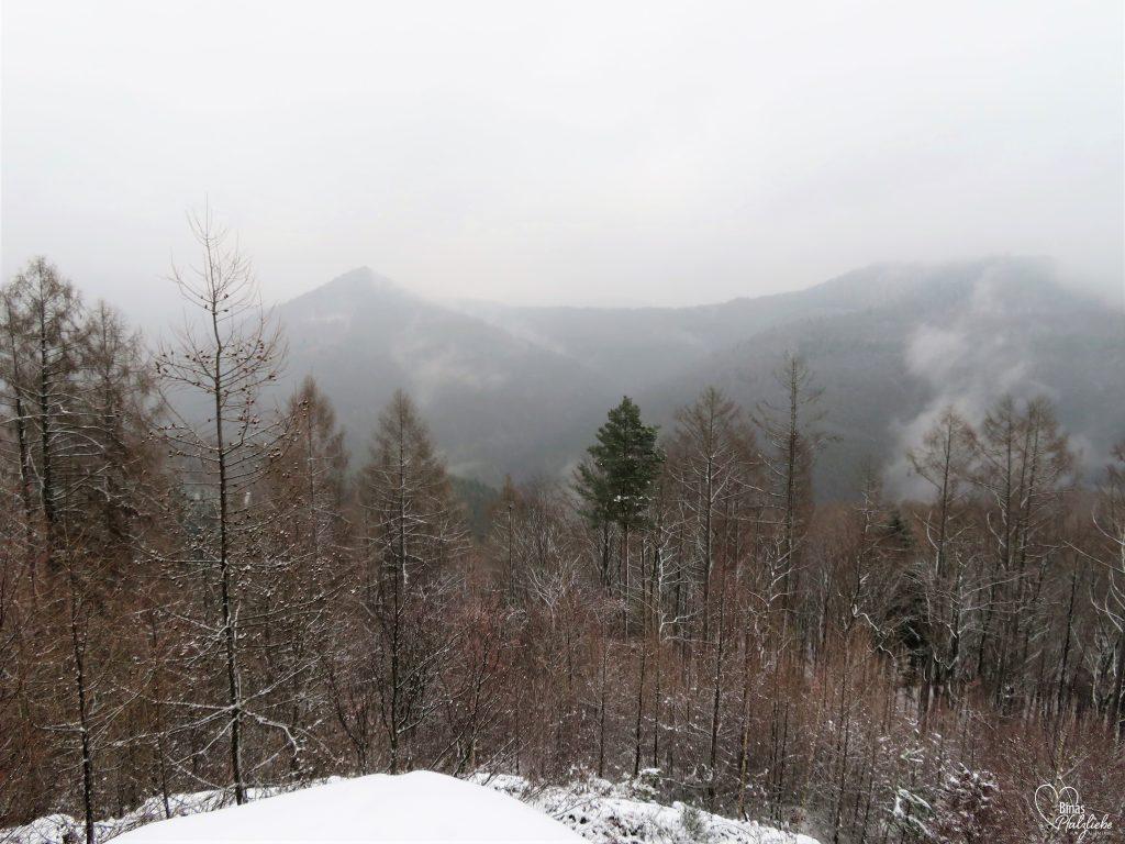 Wanderung zum Kirschfelsen #kirschfelsen #wandertour #winter #schnee #wald