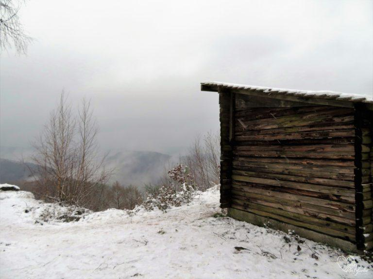 Aussichtspunkt Kirschfelsen #kirschfelsen #aussichtspunkt #wanderung #pfälzerwald