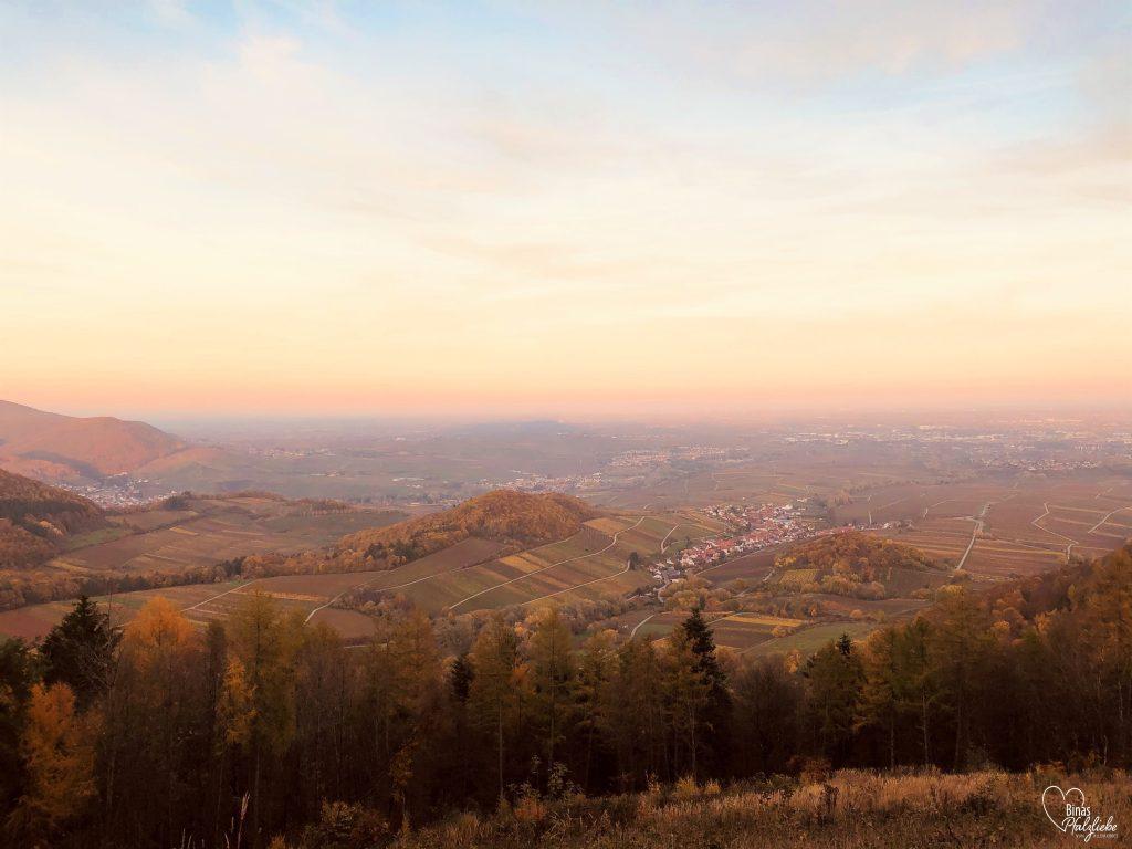 Ausblick auf die Südpfalz #südpfalz #wanderweg #aussichtspunkt #leinsweiler