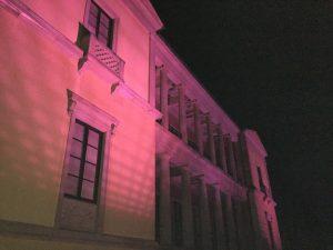 Der Frühling kommt - die Pfalz wird rosa! (Rosa Leuchten I)