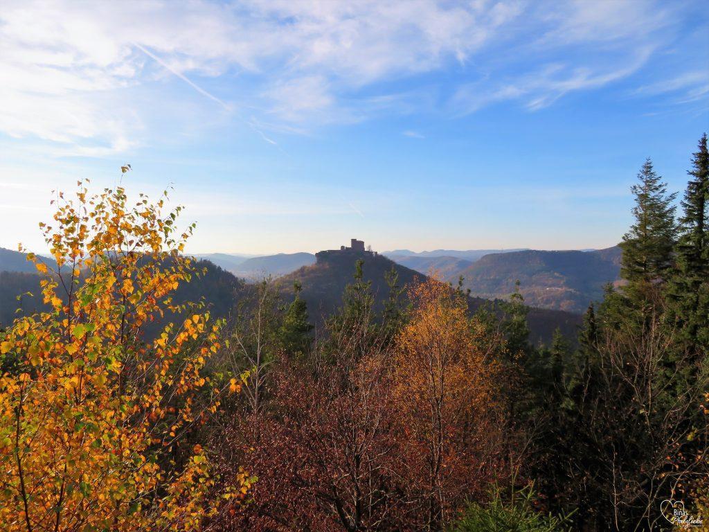 Ausblick auf den Trifels #wanderweg #slevogtweg #wandertour #wanderung #pfälzerwald