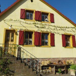 WeinTestival und KunstFestival in Rhodt unter Rietburg