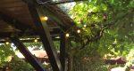 Binas Pfalzliebe Tipps für heiße Tage und laue Nächte (Pfälzer Sommer Teil VI)
