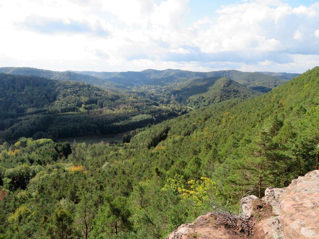Aussicht von den Geiersteinen bei Lug #pfälzerwald #aussicht