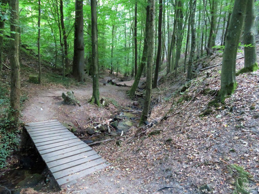 Weg durchs Hainbachtal #südpfalz #wanderweg #wanderung #wandern