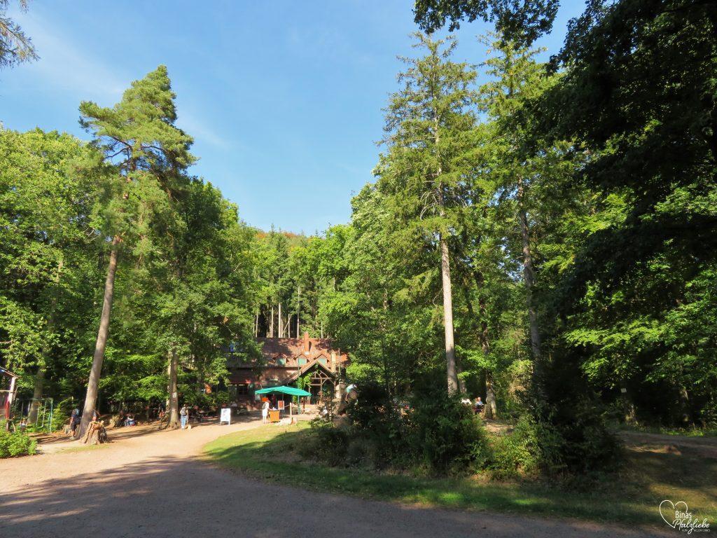 Landauer Hütte #pfälzerwald #wald #hütte #rast
