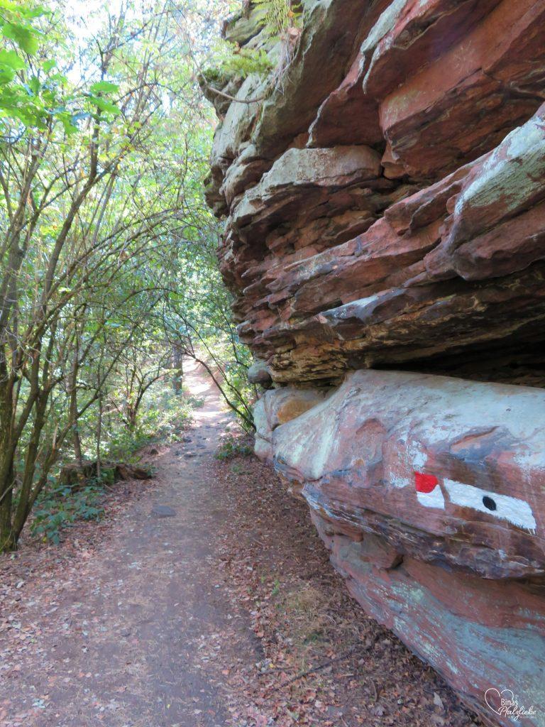 Sandsteinfelsen mit Wegmarkierung #wanderweg #pfälzerwald #wald #pfalz