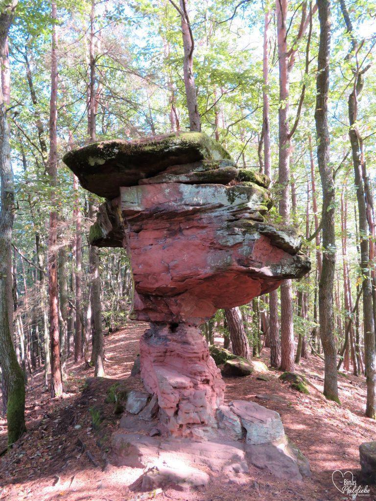 Felsformation aus Sandstein #sandstein #waldweg #pfalz #wanderung #wandertipp